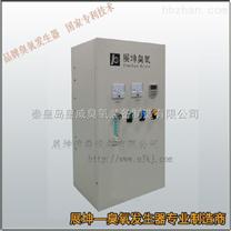 原材料消毒高浓度臭氧水机