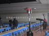银川燃气取暖器-灵武伞形取暖器-吴忠液化气取暖器-固原灯型取暖器