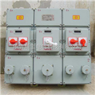 BXM(D)51防爆动力配电箱 /防爆配电箱价格