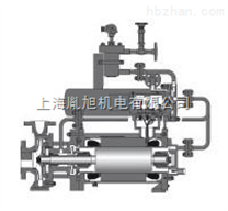 德国Hermetic-pumpen排量泵