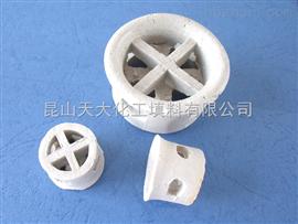 DN25-76陶瓷阶梯环