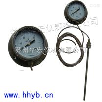 WTZ压力式温度计