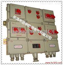 BXX51-2回路防爆动力检修箱