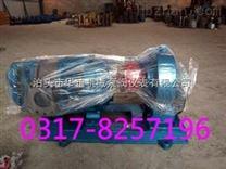 罗茨泵加强型价格厂家0317-8257196