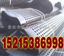 济宁排水板车库绿化排水板厂家