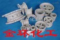 陶瓷鲍尔环,陶瓷阶梯环,陶瓷矩鞍环