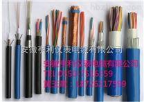 ZN-DJFPVRP六安计算机电缆(标准)(槐东电力)