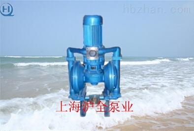 电动隔膜泵参数,隔膜泵结构图
