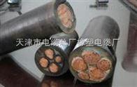 CEFR电缆,天津CEFRP船用屏蔽电缆