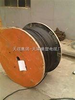 天津 DJFPFP22计算机电缆
