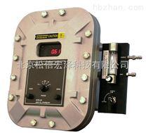 防爆型在線氧分析儀GPR-18
