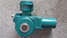 DQW-60-DSI電動執行器