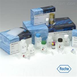 植物玉米索核苷(ZR )ELISA試劑盒