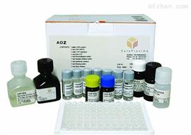 小鼠白介素13(IL-13)ELISA试剂盒