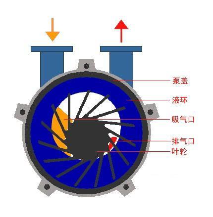 水环式真空泵工作原理动画结构图及型号参数