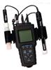 奥立龙420P-01A 专业型便携式PH/ISE(离子浓度)测量仪