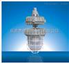 RDB83-W85JRDB83-W85J防爆护栏式无极灯 依客思