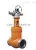 Z961Y磅级电站闸阀    - 上海标一阀门 品质保证