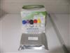 鸭病毒性肠炎病毒(DEV)ELISA分析试剂盒