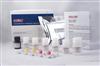 兔Bcl-2相关X蛋白(BAX)ELISA试剂盒