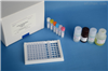 豚鼠白介素12(IL-12/P70)ELISA试剂盒