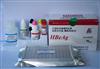 绵羊白介素6(IL-6)ELISA试剂盒