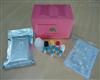 鸭免疫球蛋白E(IgE)ELISA试剂盒