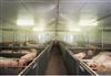 养殖场消毒设备